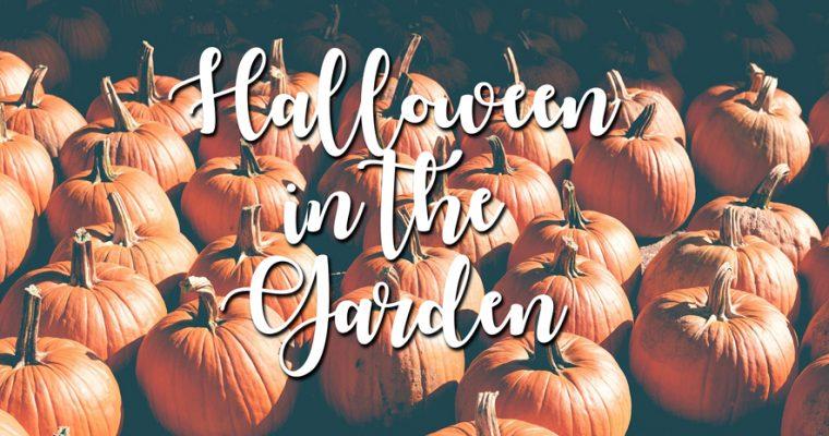 Halloween In The Garden!