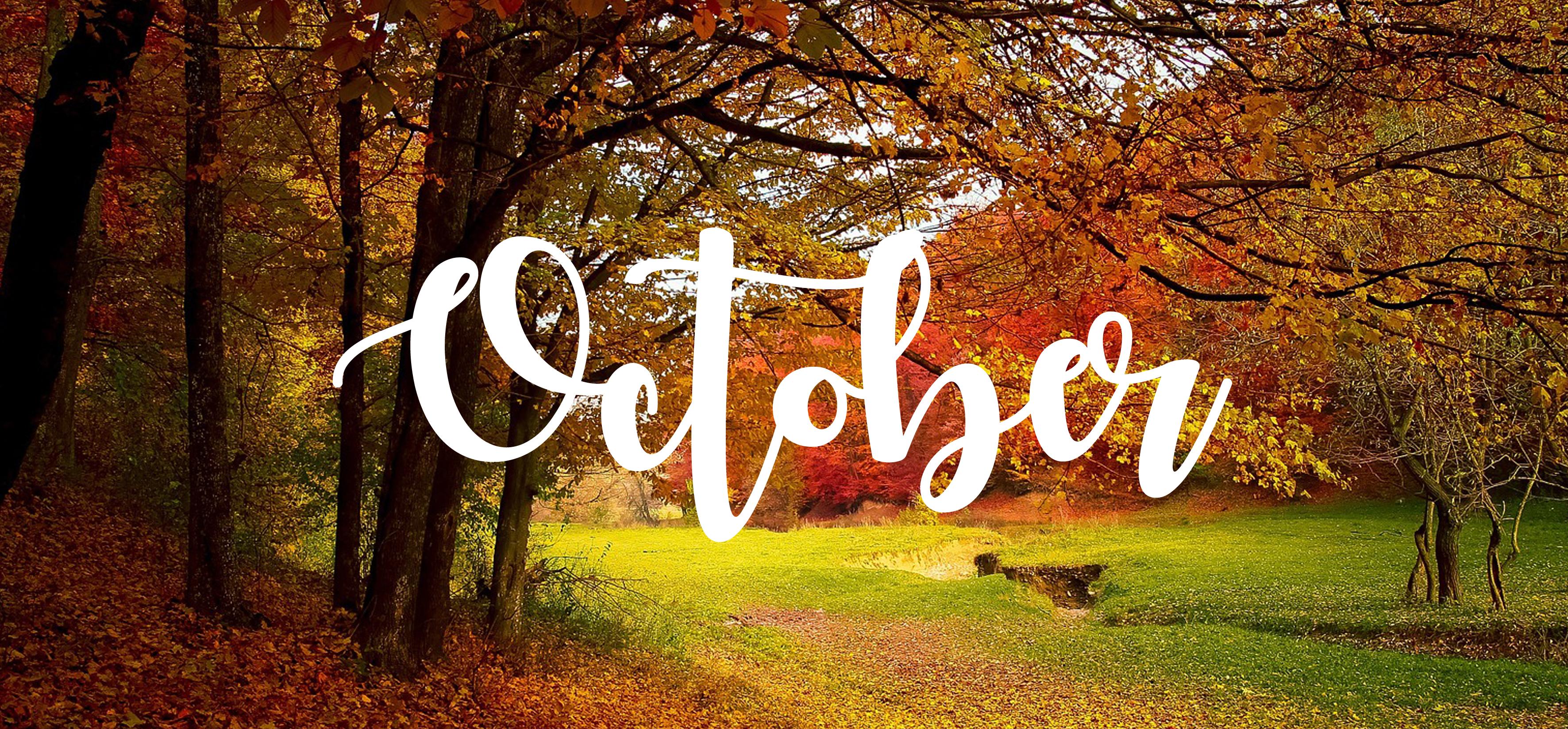 Your October Garden