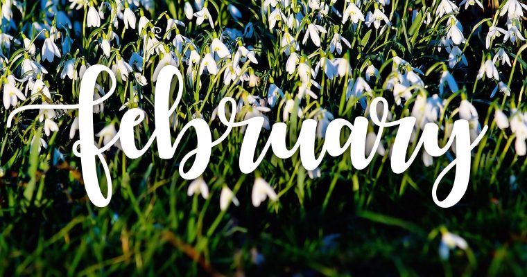 Your February Garden