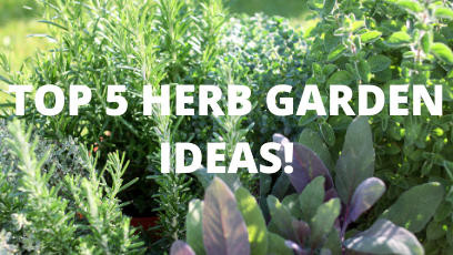 Check out these herb gardens!
